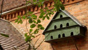 Dovecote in Tardebigge Court