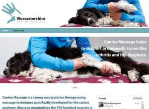 Link to Worcestershire Canine Massage website